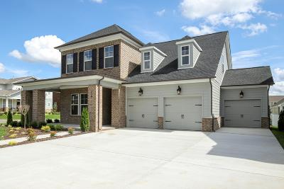 Hendersonville Single Family Home For Sale: 116 Misty Way #298