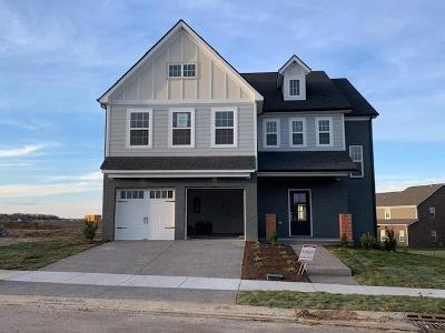 Sumner County Single Family Home For Sale: 747 Canter Lane - Lot 426