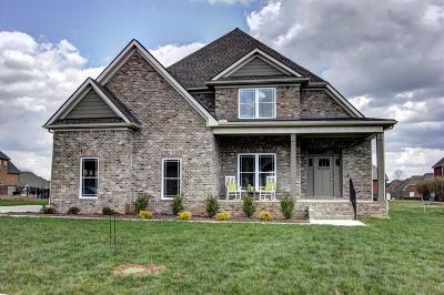 Murfreesboro Single Family Home For Sale: 2610 Ritz Ln