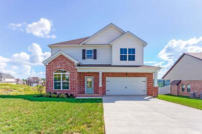 Smyrna Single Family Home For Sale: 5543 Stonefield Drive
