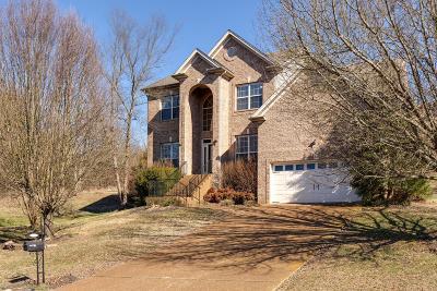 Goodlettsville Single Family Home For Sale: 815 Lynn Dr