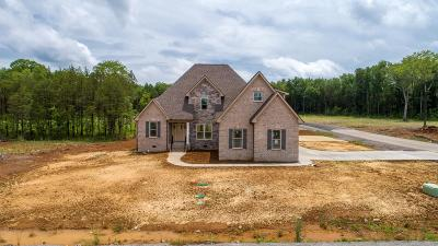 Single Family Home For Sale: 7801 Brenda Ln Lot 48