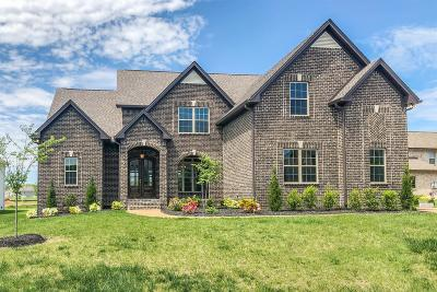 Spring Hill Single Family Home For Sale: 4002 Cardigan Lane (262)