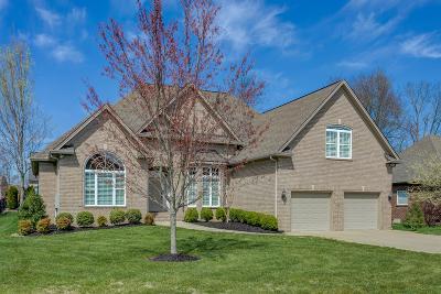 Spring Hill Single Family Home For Sale: 3019 Sakari Cir