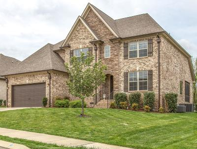 Spring Hill Single Family Home For Sale: 4149 Miles Johnson Pkwy