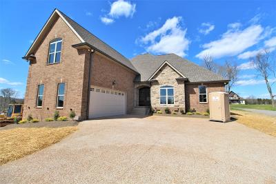 Mount Juliet Single Family Home Under Contract - Not Showing: 7238 Couchville Pike- Lot 3