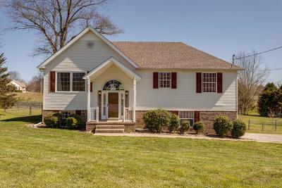 Spring Hill Single Family Home For Sale: 405 Billy Ln