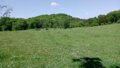 Franklin Residential Lots & Land For Sale: 4078 Carters Creek Park
