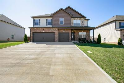 Christian County, Ky, Todd County, Ky, Montgomery County Single Family Home For Sale: 128 Flat Rock Rd