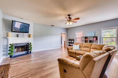 Spring Hill Single Family Home For Sale: 1236 Chapmans Retreat Dr