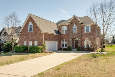 Spring Hill Single Family Home For Sale: 1022 Neal Crest Cir