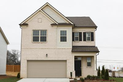 Spring Hill Single Family Home For Sale: 1000 Lonergan Circle #01