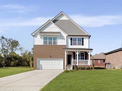Smyrna Single Family Home For Sale: 1002 Green Meadow Lane Lot 6