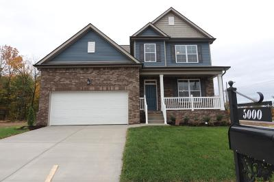 Smyrna Single Family Home For Sale: 810 Green Meadow Lane Lot 38