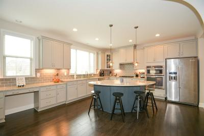 Mount Juliet Single Family Home For Sale: 2004 Oliver Drive