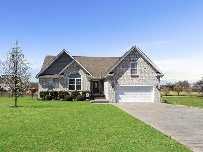 Single Family Home For Sale: 126 Irish Oaks Dr