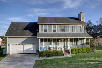 Smyrna Single Family Home Under Contract - Not Showing: 210 Saint Lukes Ln