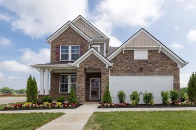 Murfreesboro, Rockvale Single Family Home For Sale: 445 Nightcap Lane (Lot 176)