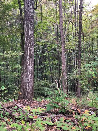 Franklin Residential Lots & Land For Sale: 5904 Greenbrier Rd Tract 1