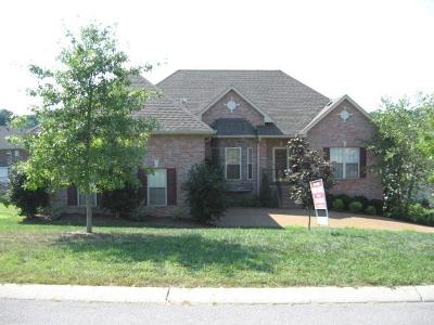 Goodlettsville Single Family Home For Sale: 139 Wynlands Cir