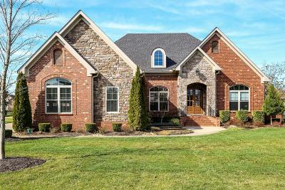 Murfreesboro Single Family Home For Sale: 4416 Marymont Springs Blvd