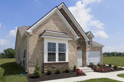Mount Juliet Single Family Home For Sale: 741 Tennypark Lane