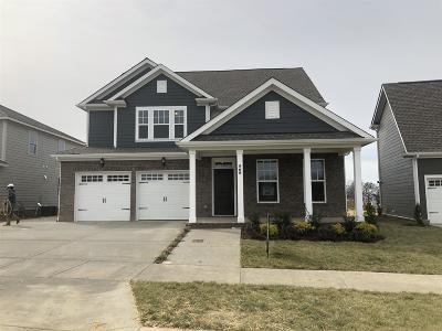Hendersonville Single Family Home For Sale: 568 Nottingham Avenue #512