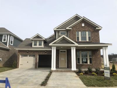 Hendersonville Single Family Home For Sale: 437 Abington Drive #526