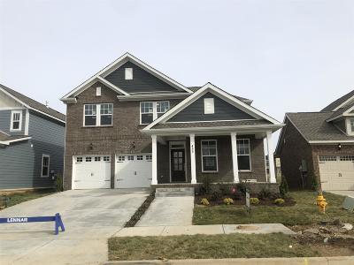 Hendersonville Single Family Home For Sale: 433 Abington Drive #527