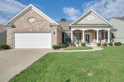 Mount Juliet Single Family Home For Sale: 311 Infantry Run