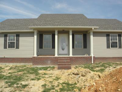 Single Family Home For Sale: 1288 Mt Olive Road