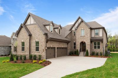 Nolensville Single Family Home For Sale: 112 Asher Downs Circle #3