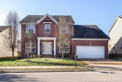 Spring Hill Single Family Home For Sale: 2867 Faith Ln