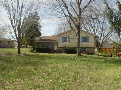 Lawrenceburg Single Family Home For Sale: 1585 Branch Dr