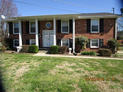 Hendersonville Single Family Home For Sale: 110 Southern Trace