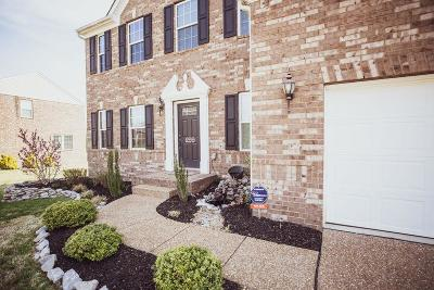 Mount Juliet Single Family Home For Sale: 299 Cobblestone Lndg