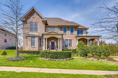 Nolensville Single Family Home Active Under Contract: 1001 Brittain Downs Dr