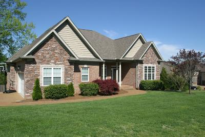 Mount Juliet Single Family Home For Sale: 9119 Brooks Crossing