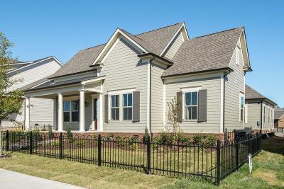 Hendersonville Single Family Home For Sale: 1580 Drakes Creek Rd Lot 19