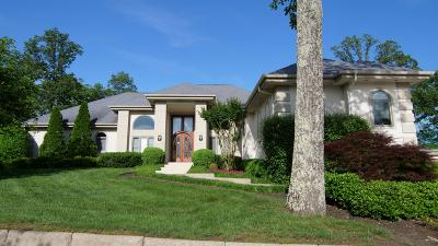 Brentwood  Single Family Home For Sale: 720 Valhalla Ln