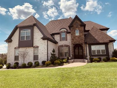 Mount Juliet Single Family Home For Sale: 2000 Beechhaven Cir