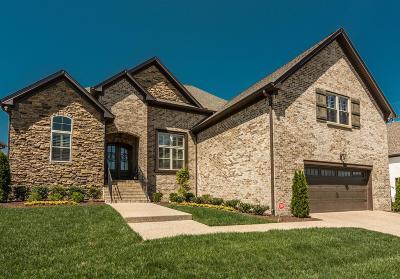 Hendersonville Single Family Home For Sale: 123 Stark Knob Rd.