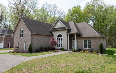 Single Family Home For Sale: 1214 Lake Rise Overlook