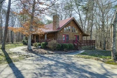 Van Buren County Single Family Home For Sale: 425 High Meadow Dr