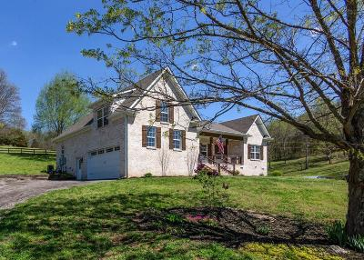 Spring Hill Single Family Home For Sale: 1908 Dr Robinson Rd