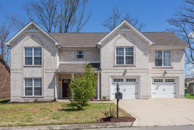 Spring Hill Single Family Home For Sale: 1010 Neeleys Bnd