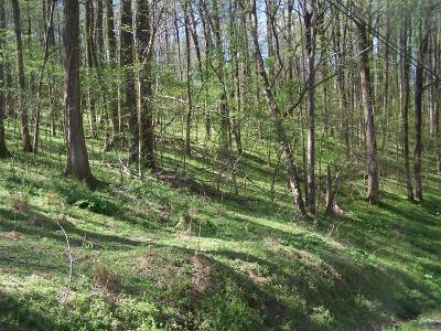 Pulaski Residential Lots & Land For Sale: Red Bud Ln