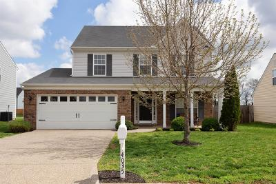 Spring Hill Single Family Home For Sale: 4035 Cadence Dr