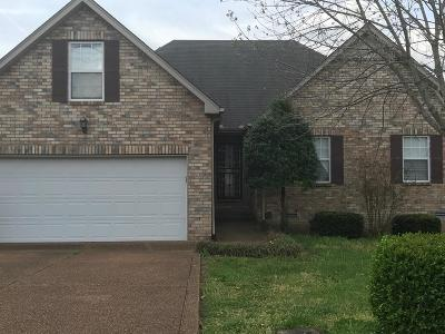 Nashville Single Family Home For Sale: 3417 Chateau Valley Ln