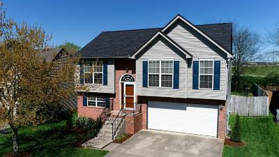 Hendersonville Single Family Home Under Contract - Showing: 121 Sumner Meadows Ln